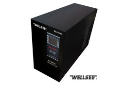 Инвертор ( ИБП ) Wellsee WS-P4000